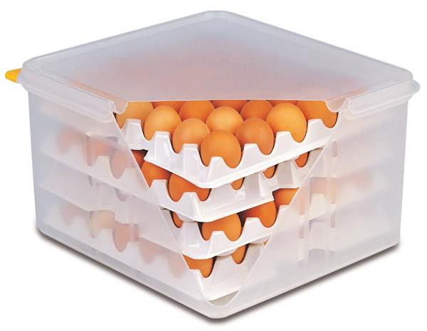 GN 2/3 Eier-Box